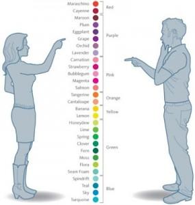 couleurs homme femme différences palette plus