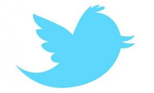 logo twitter larry bird oiseau bleu