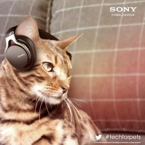 Sony Animalia Des écouteurs audio pour chats