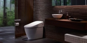 smart toilette