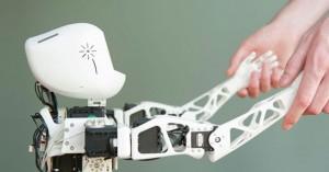 inria_poppy robot innorobo lyon